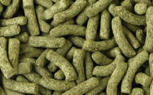 monocomponente voeding, joke pottie, gistel, dierenarts, pellets